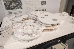 先行研究に基づいて再生医療から新しい病院のかたちを提案した案。(雲々型) A proposal that proposed a new hospital form from regenerative medicine based on the previous research. (Cloud shaped)